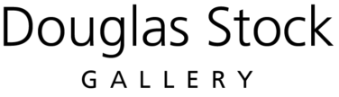 Douglas Scott Gallery