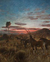 Wilhelm Kuhnert, Fringe-Eared Oryx
